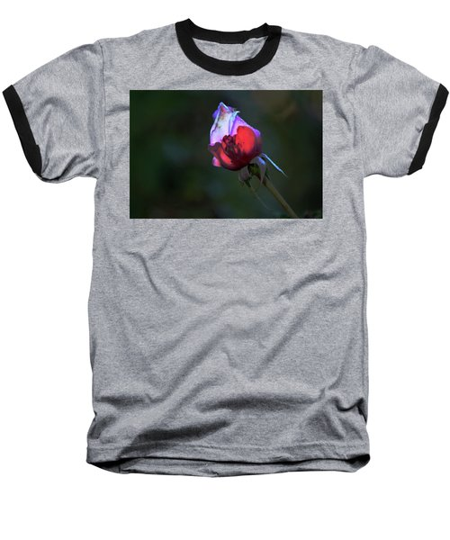 Water Droplets On The Rose Baseball T-Shirt by Michael Courtney