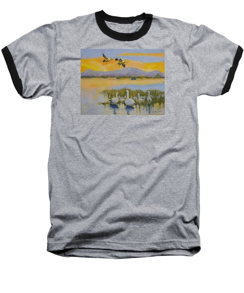 Water Fowl, Sutter Buttes Baseball T-Shirt