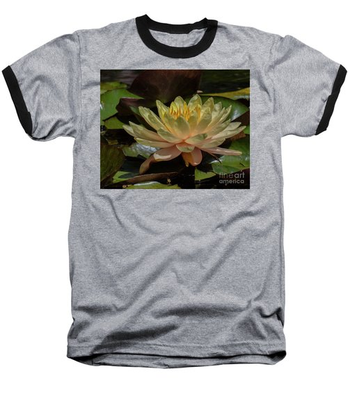 Water Lilly 1 Baseball T-Shirt