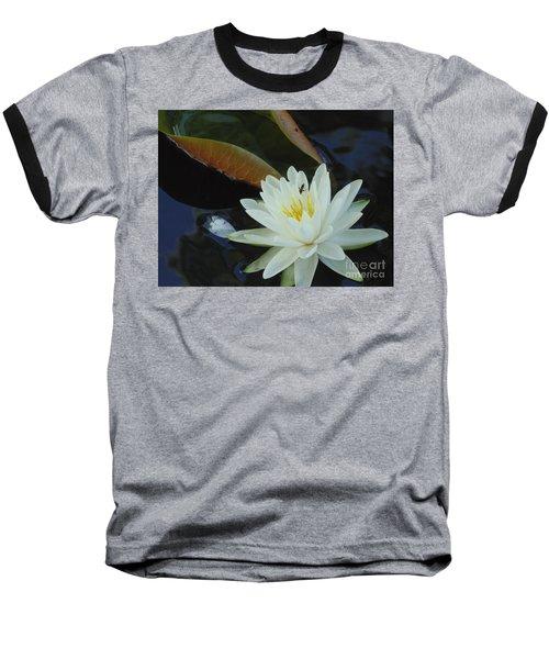 Water Lily Baseball T-Shirt by Daun Soden-Greene