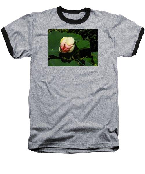 Water Lily Baseball T-Shirt by Ernst Dittmar