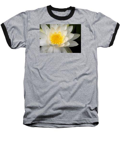 Water Lily II Baseball T-Shirt