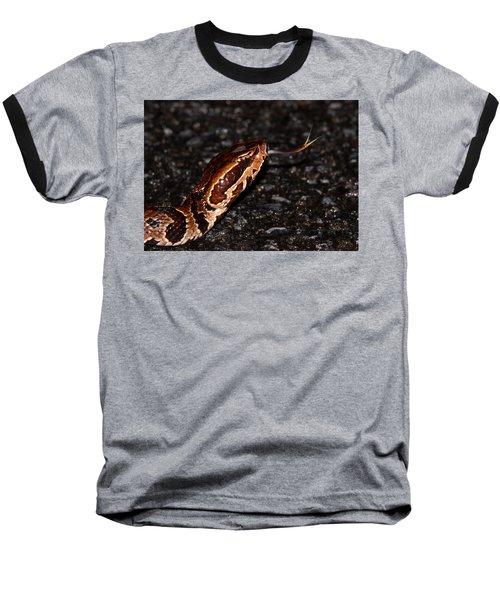 Water Moccasin Baseball T-Shirt