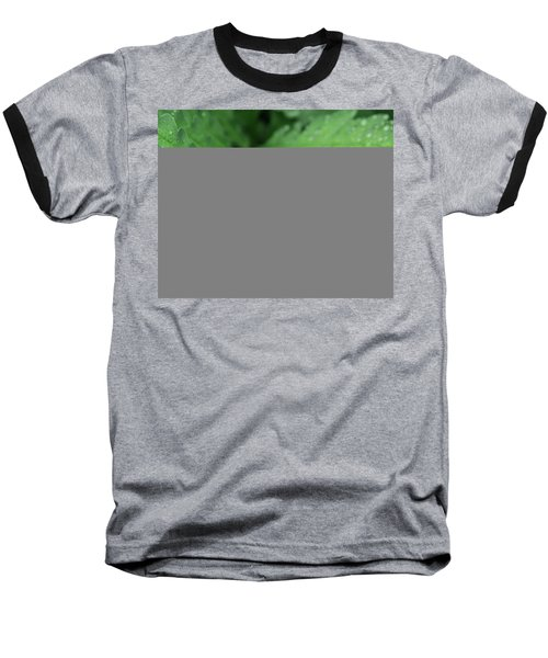 Water On The Fronds Baseball T-Shirt