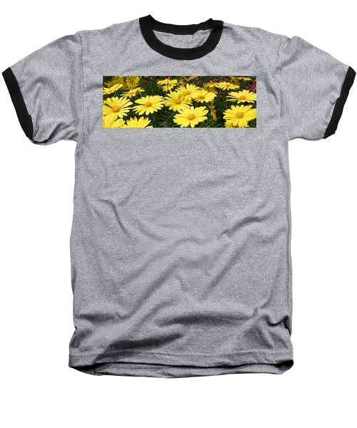 Waves Of Yellow Daisies Baseball T-Shirt