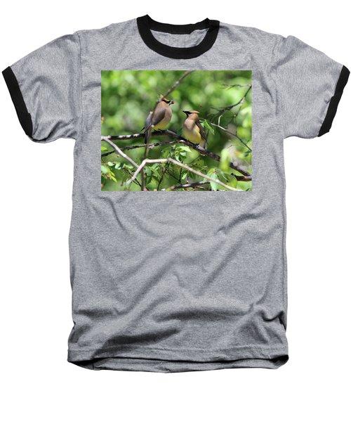 Waxwing Socialism Baseball T-Shirt