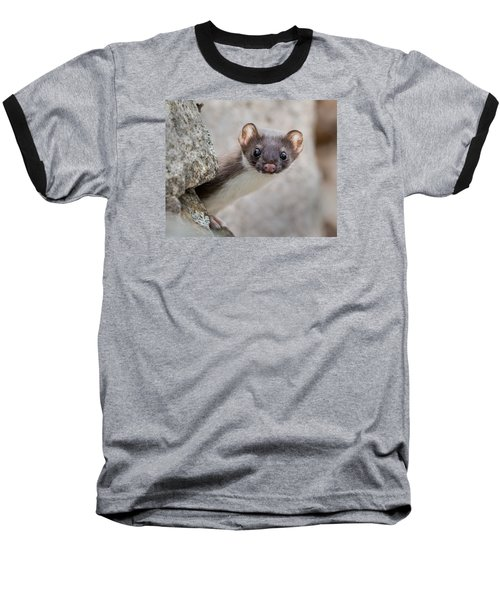Weasel Peek-a-boo Baseball T-Shirt by Stephen Flint