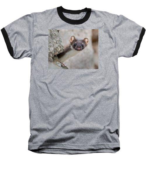 Weasel Peek-a-boo Baseball T-Shirt