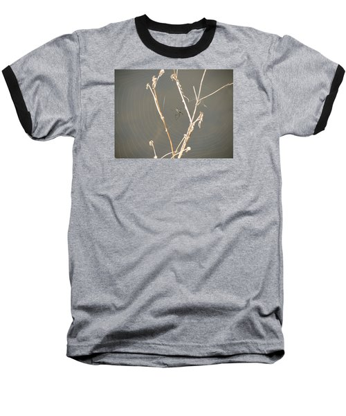 Web Of Wonder Baseball T-Shirt