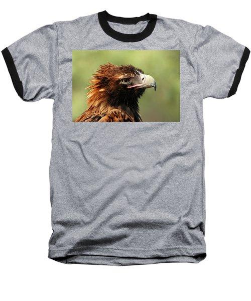 Wedge-tailed Eagle Baseball T-Shirt