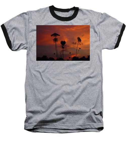 Weeds In The Sunrise Baseball T-Shirt by Kathryn Meyer
