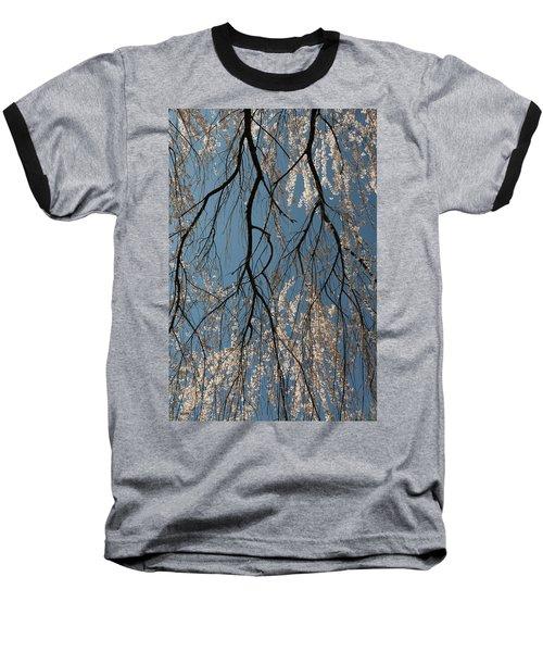 Weeping Cherry #2 Baseball T-Shirt by Dana Sohr