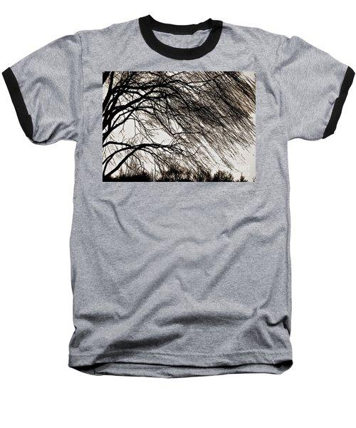 Weeping Willow Tree  Baseball T-Shirt by Carol F Austin
