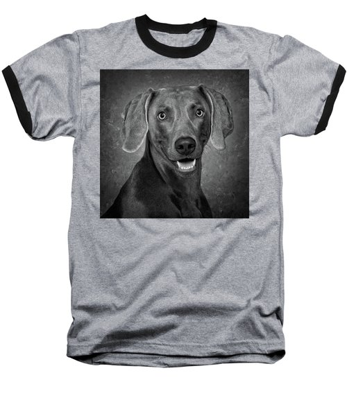 Weimaraner In Black And White Baseball T-Shirt by Greg Mimbs
