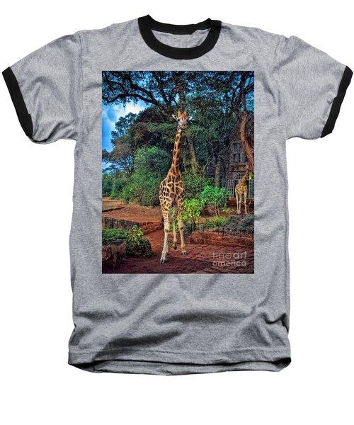 Welcome To Giraffe Manor Baseball T-Shirt by Karen Lewis