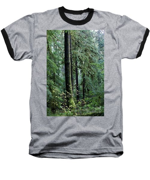 Welcome To The Woods Baseball T-Shirt by Jane Eleanor Nicholas