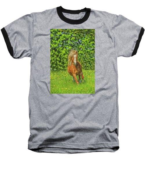 Welsh Pony Baseball T-Shirt