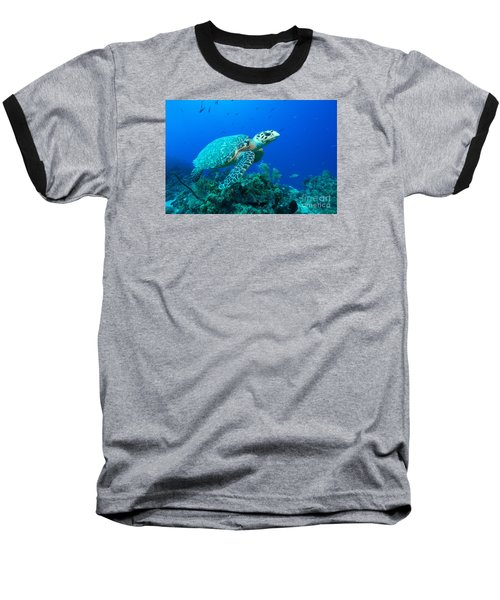 Baseball T-Shirt featuring the photograph West Caicos Traveler by Aaron Whittemore