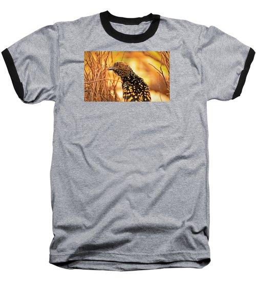 Western Bowerbird Baseball T-Shirt
