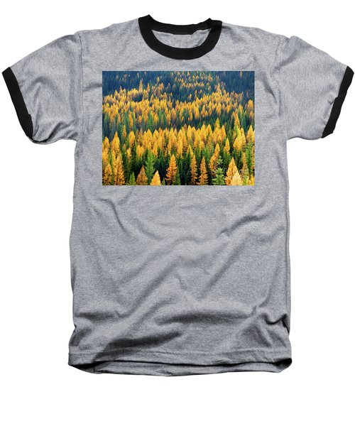 Western Larch  Baseball T-Shirt