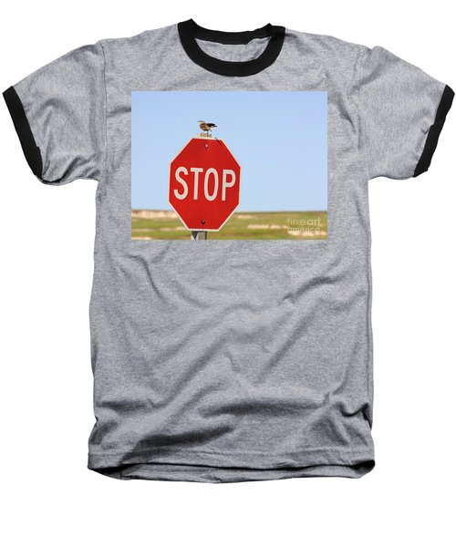 Western Meadowlark Singing On Top Of A Stop Sign Baseball T-Shirt by Louise Heusinkveld