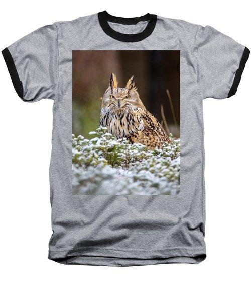 Western Siberian Owl Baseball T-Shirt