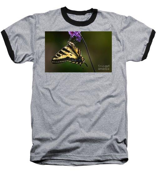 Western Tiger Swallowtail Butterfly On Purble Verbena Baseball T-Shirt