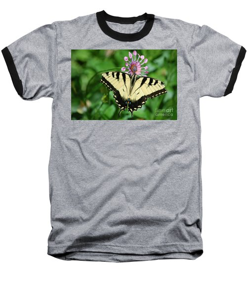 Western Tiger Swallowtail Baseball T-Shirt