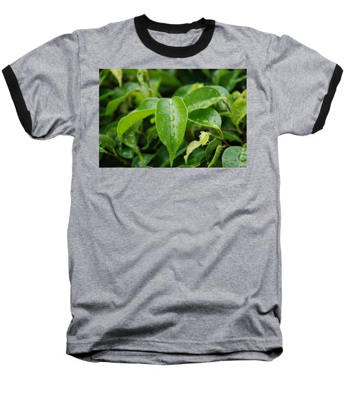 Baseball T-Shirt featuring the photograph Wet Bushes by Rob Hans
