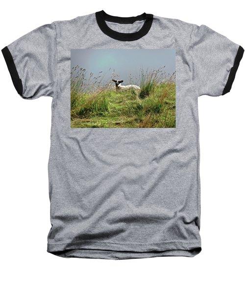 Wet Sheep Baseball T-Shirt