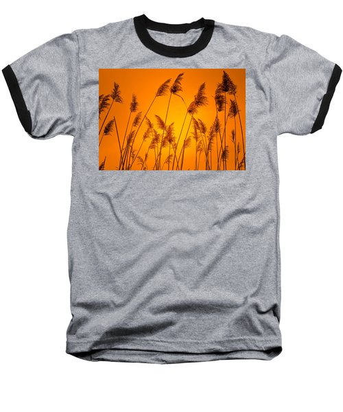 Wetland Sunset Baseball T-Shirt