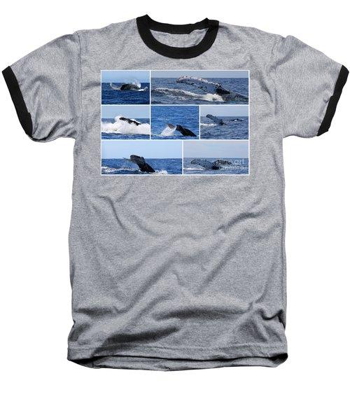 Whale Action Baseball T-Shirt