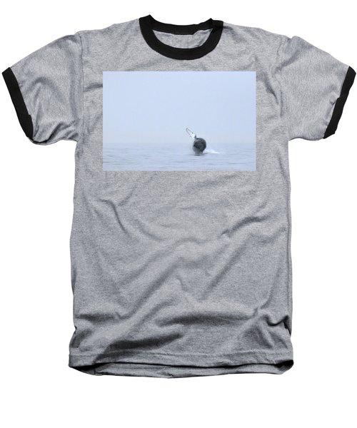 Whale Baseball T-Shirt