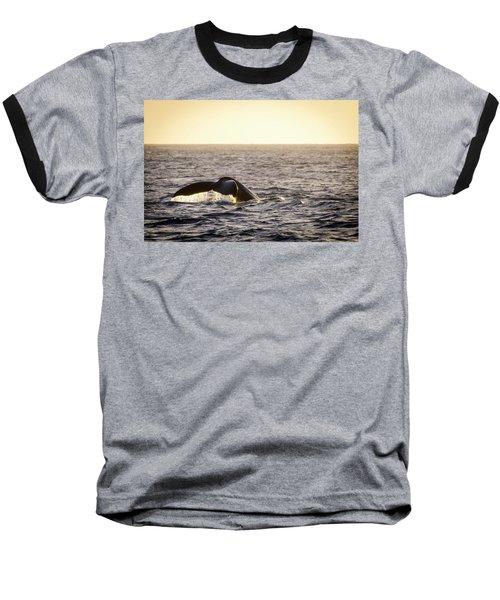 Whale Fluke Baseball T-Shirt