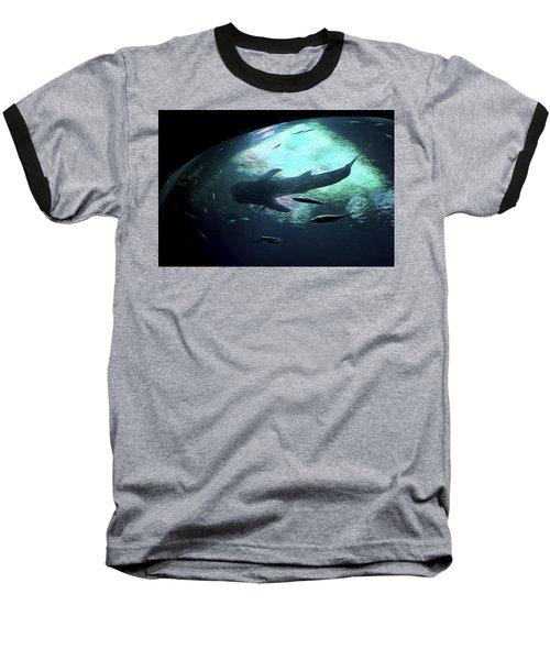 Whale Shark Of The Earth Baseball T-Shirt