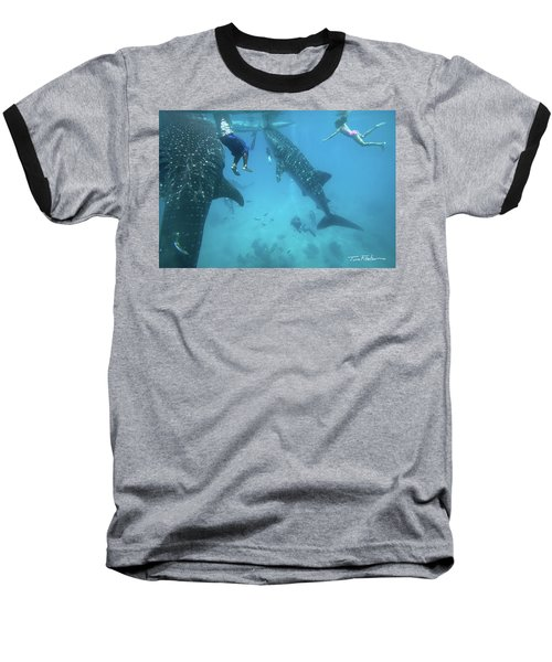 Whale Sharks Baseball T-Shirt