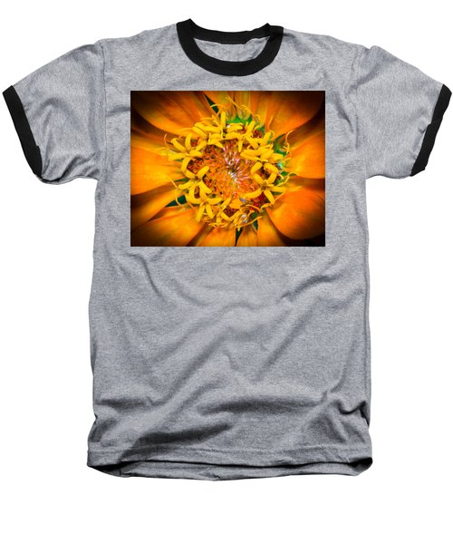 What A Bee Sees Baseball T-Shirt