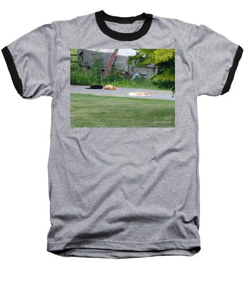 Baseball T-Shirt featuring the photograph What A Day by Donald C Morgan