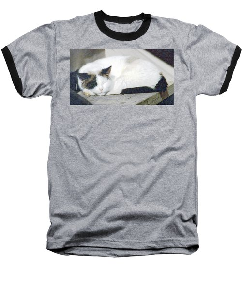 What Do Cats Dream Of #2 Baseball T-Shirt