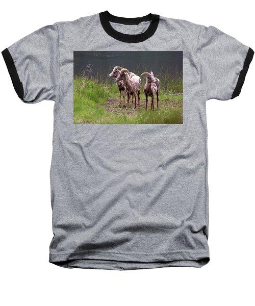 Whats Next Baseball T-Shirt