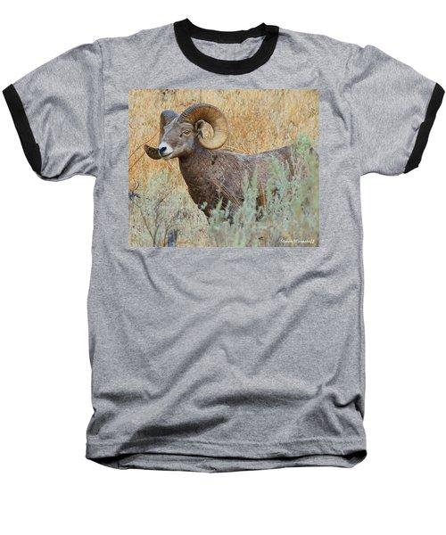 What's Up Baseball T-Shirt