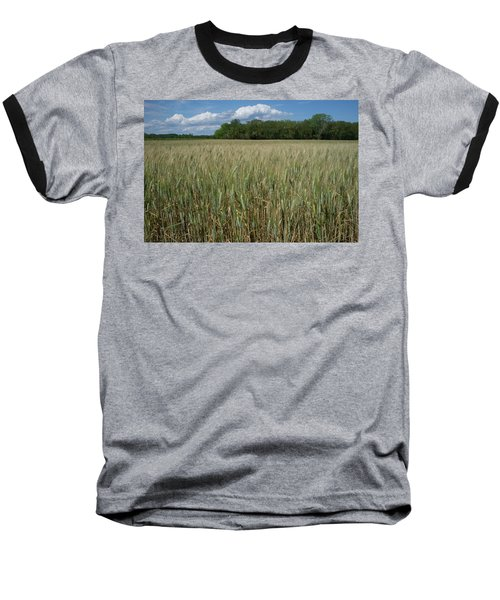 Baseball T-Shirt featuring the photograph Wheat Field by Frank DiMarco