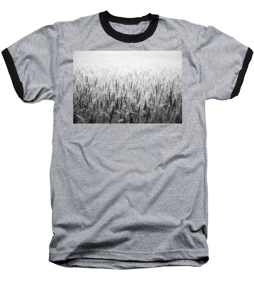 Wheat Field Baseball T-Shirt by Peter Scott