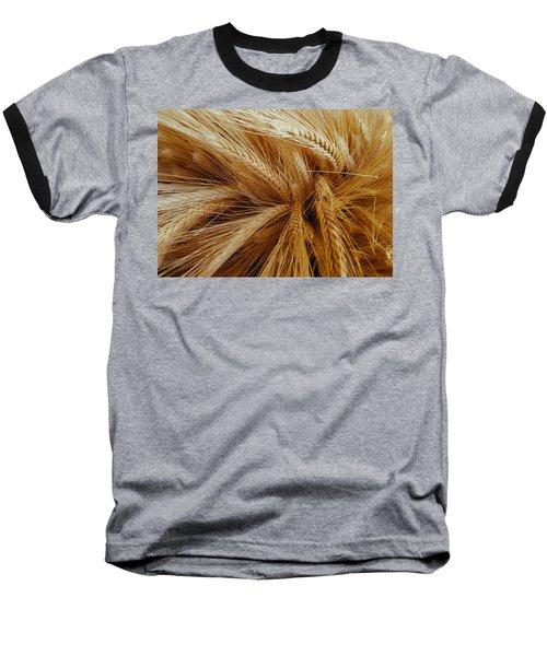 Wheat In The Sunset Baseball T-Shirt