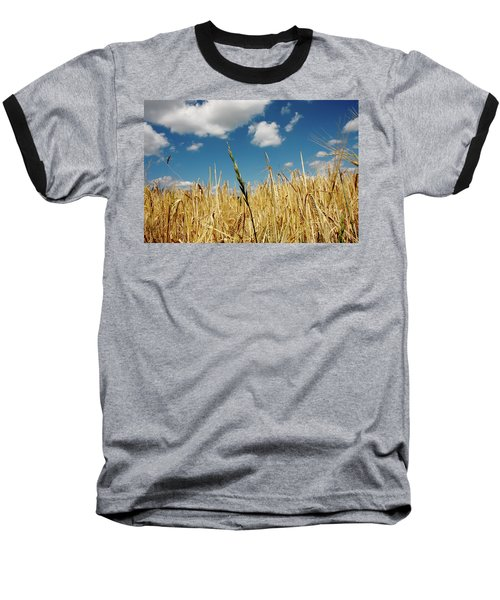 Baseball T-Shirt featuring the photograph Wheat On The Rhine by KG Thienemann