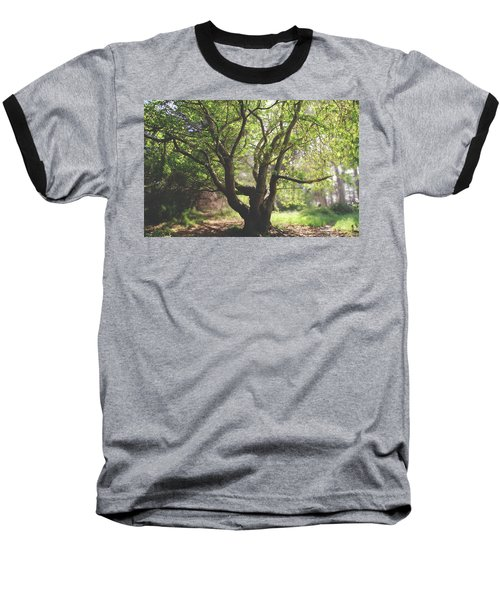 When You Need Shelter Baseball T-Shirt by Laurie Search