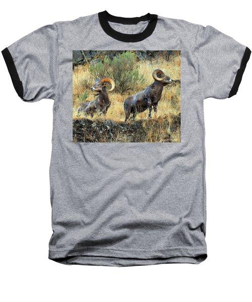 Where Did They Go? Baseball T-Shirt