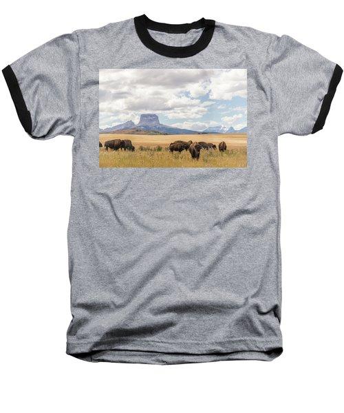 Where The Buffalo Roam Baseball T-Shirt by Alex Lapidus