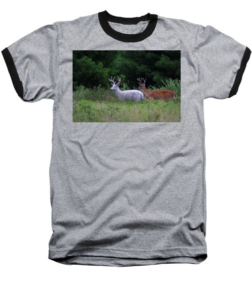 White And Brown Bucks Baseball T-Shirt