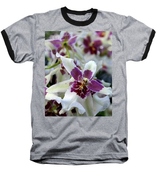 Purple And White Orchid Baseball T-Shirt